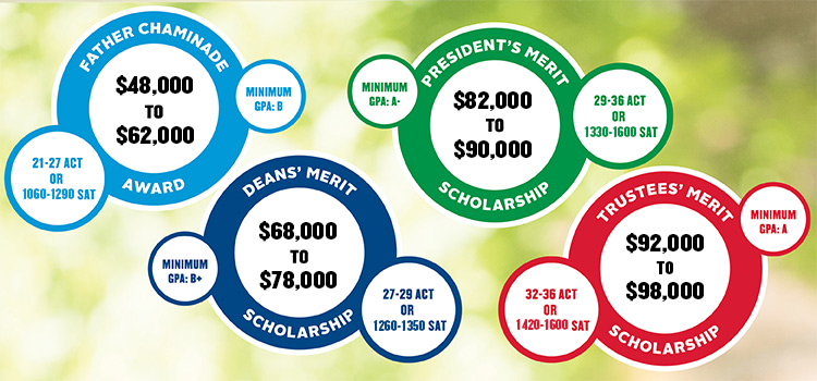 summary of merit scholarships offered at UD