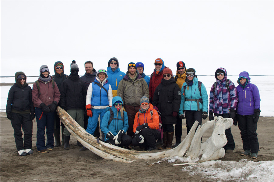Researchers with Whale Jawbone